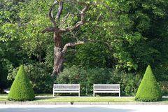 Sitzbänke im Großen Garten [Sommer]