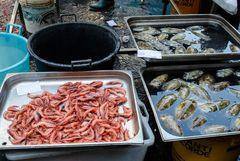 Sizhilien - Nr. 22 - Fischmarkt in Catania