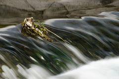 Sizilien - Nr. 34 - Am Wasserfall