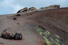 Sizilien - Nr. 7 - Crateri Silvestri / Ätna