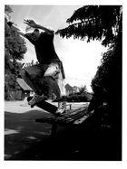 Skateboarding-Alexander Vogt