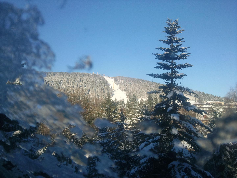 Ski heil in O-thal1