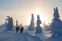 Skiwanderer im Märchenwald