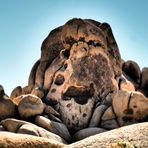 'Skull Rock', Joshua - Tree - Nationalpark