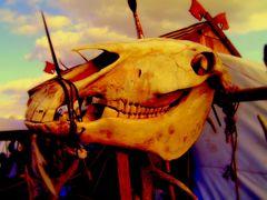 Skulls and Bones - 2