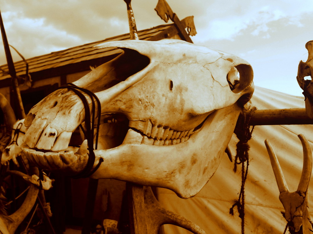 Skulls and Bones... Internat.Highlandgames 2008