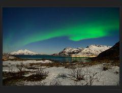Skullsfjord-Nordlicht