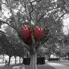 Skulptur im Binger Stadtpark