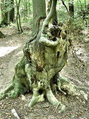Skurriler Baum