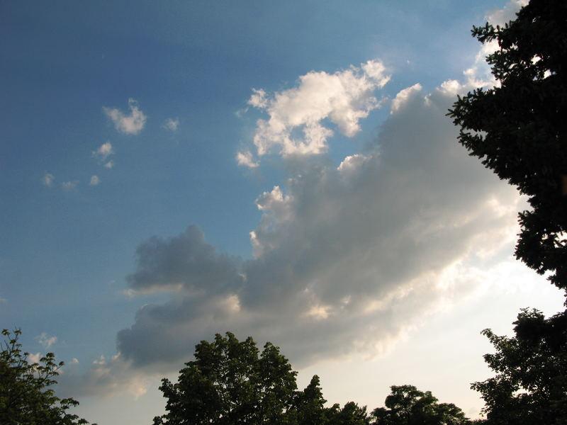 Sky dust & Wood Peger