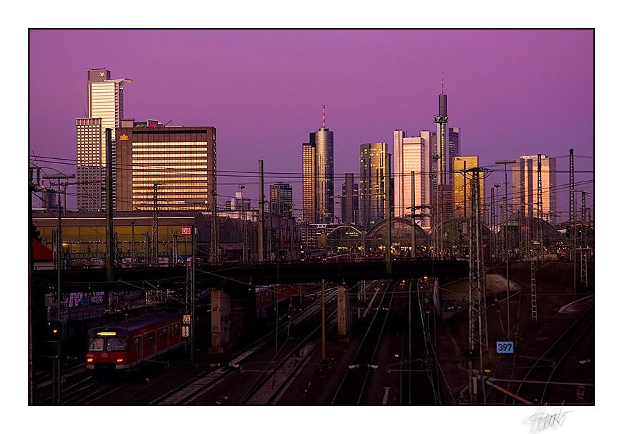 .: Skyline :.