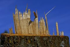 Skyline in Holz......