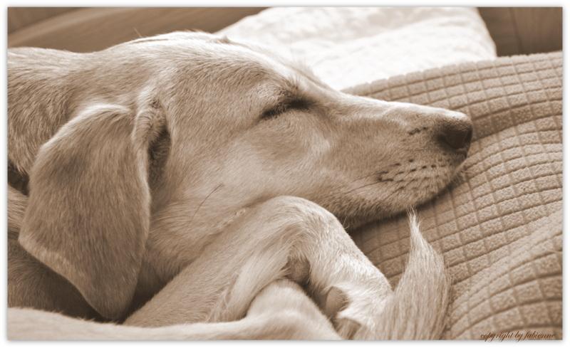 sleep well:-)