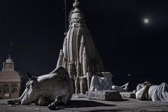 Sleeper In Necropolis ~ Harichandra
