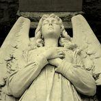 Sleeping Angel Elisabeth I