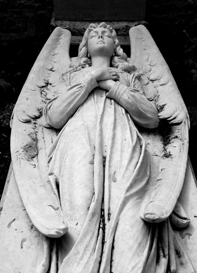 Sleeping Angel Elisabeth II
