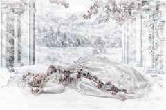 Sleeping Beauty on Ice
