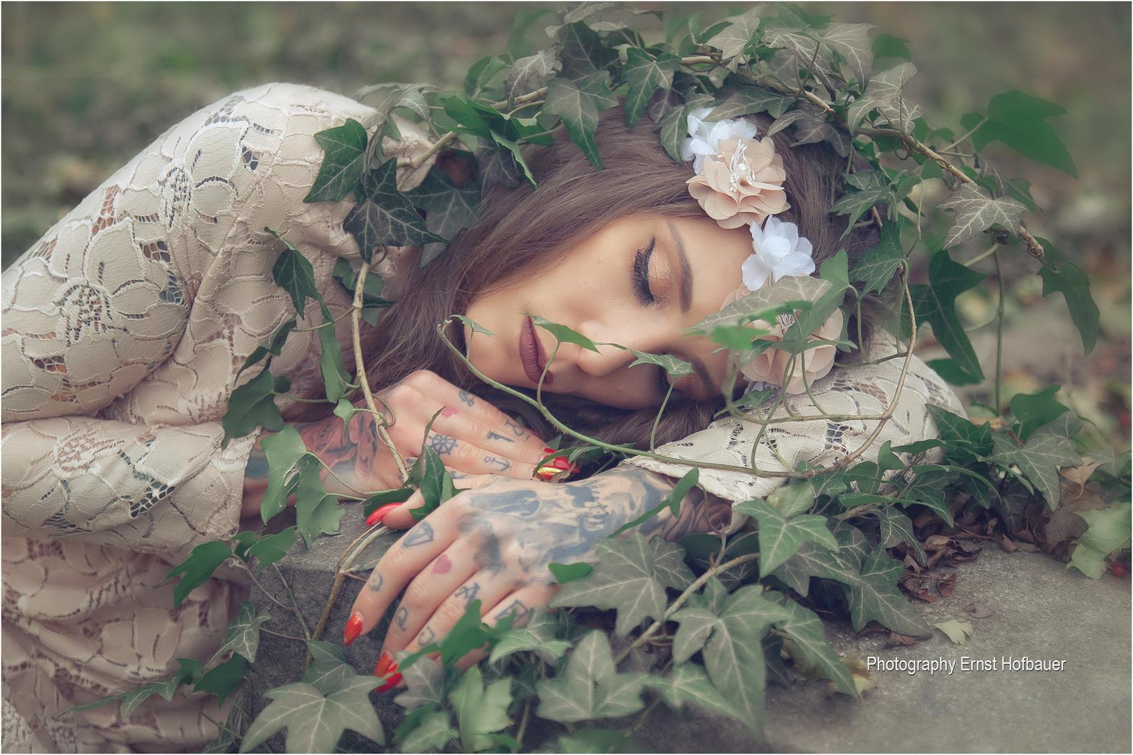 Sleeping Innocence