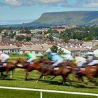 Sligo - At the Races