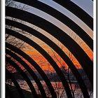 Slinky springs to Fame 3