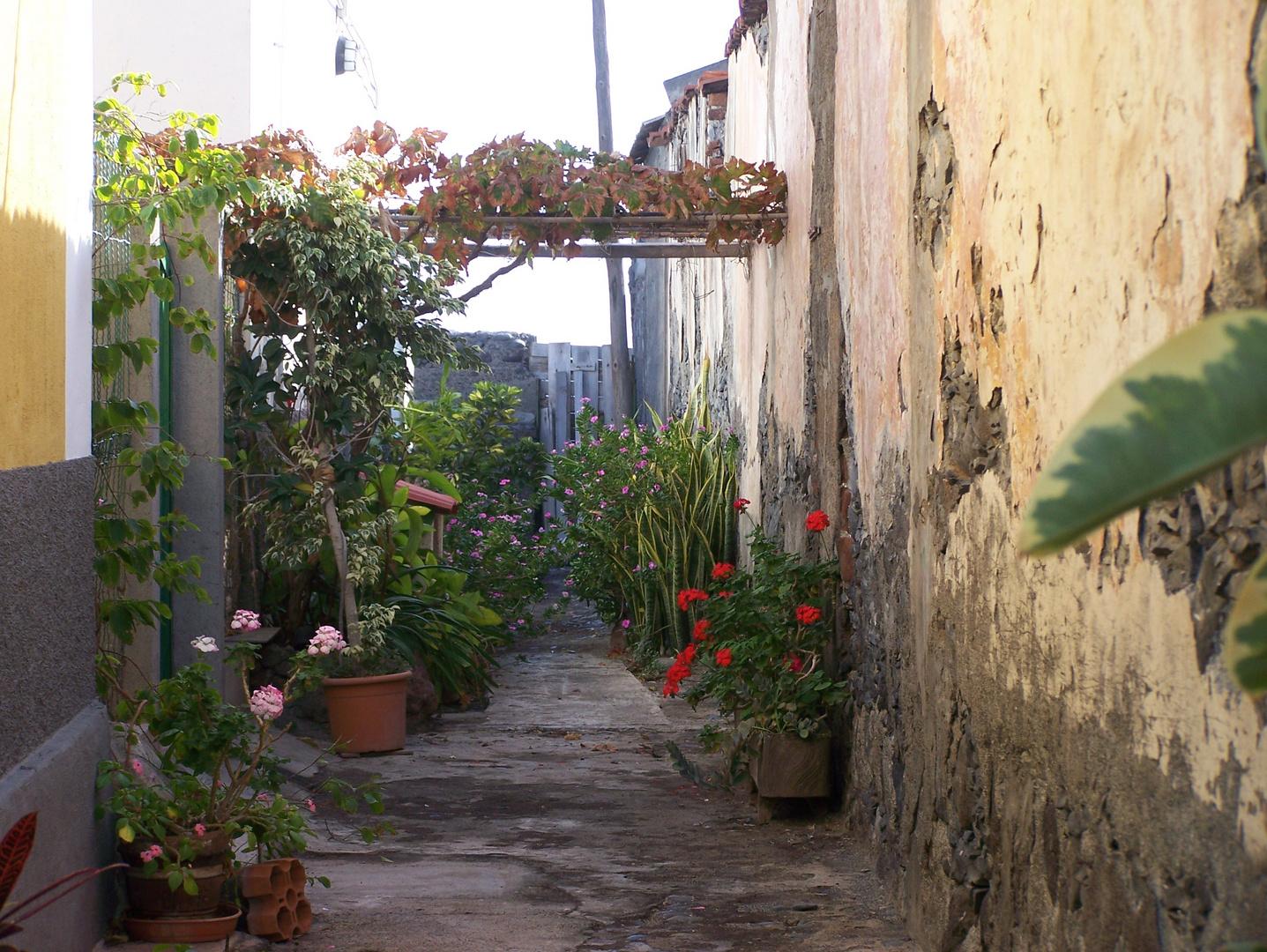 Small alleyway in Santiago