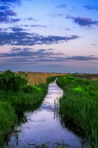 Small canal in the plain