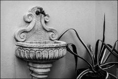 small fountain and agave