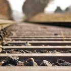 small things hold the world together ° Eisenbahndammbodenkuscheln.