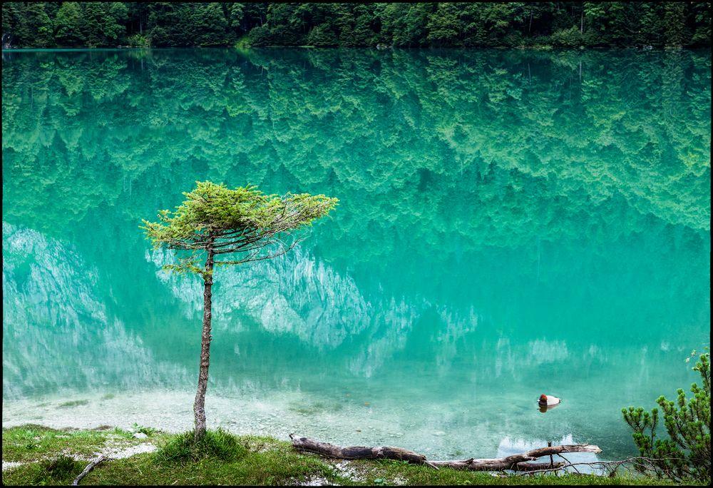 Smaragdfarbenes Wasser, keine Farbmaipulation .....