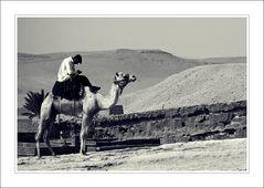 SMS in der Wüste ..die Zweite