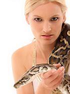snake look