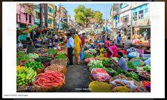 snip_Resu_Udaipur_ColorGemuese +LINK