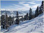 Snow Experience...