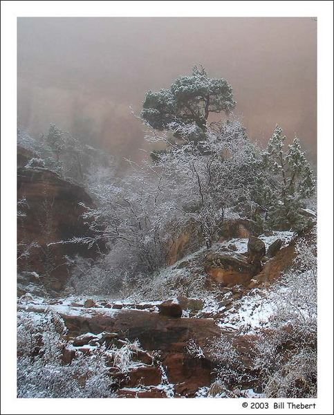 Snow in Canyonlands