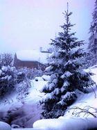 Snow Tree, Le Biot France