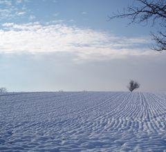snowdream 2