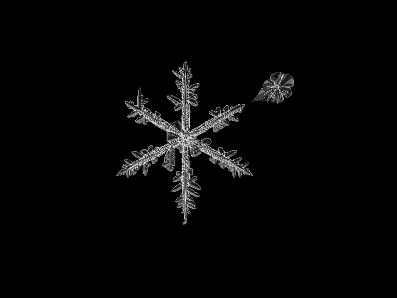 Snowflake Art II - Schneeflockenkunst II