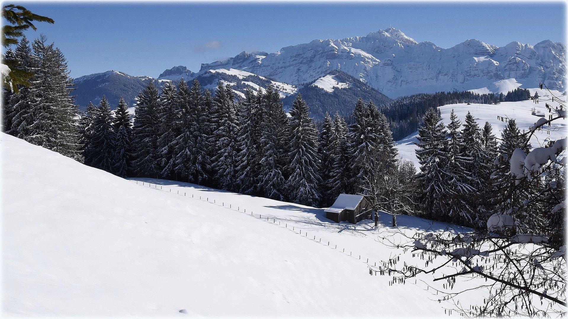 """""""snowland"""""""