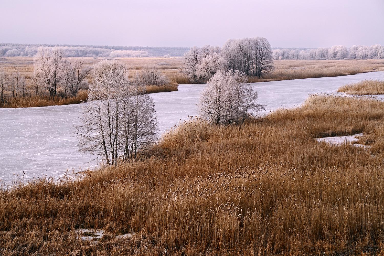 Snowless December