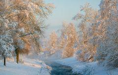 Snowtime in Rangendingen 8