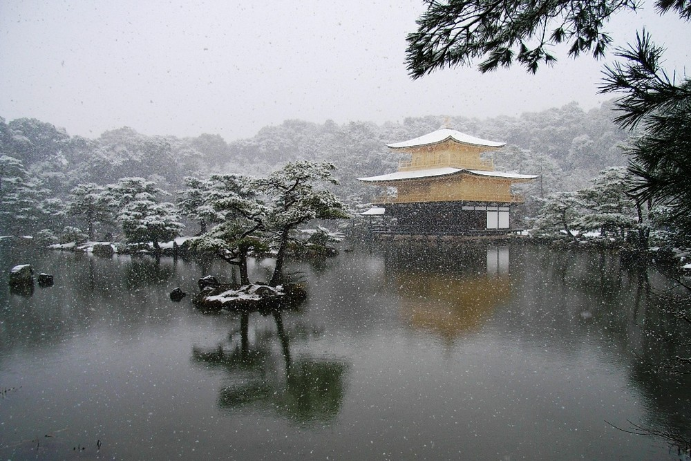 Snowy Kinkakuji