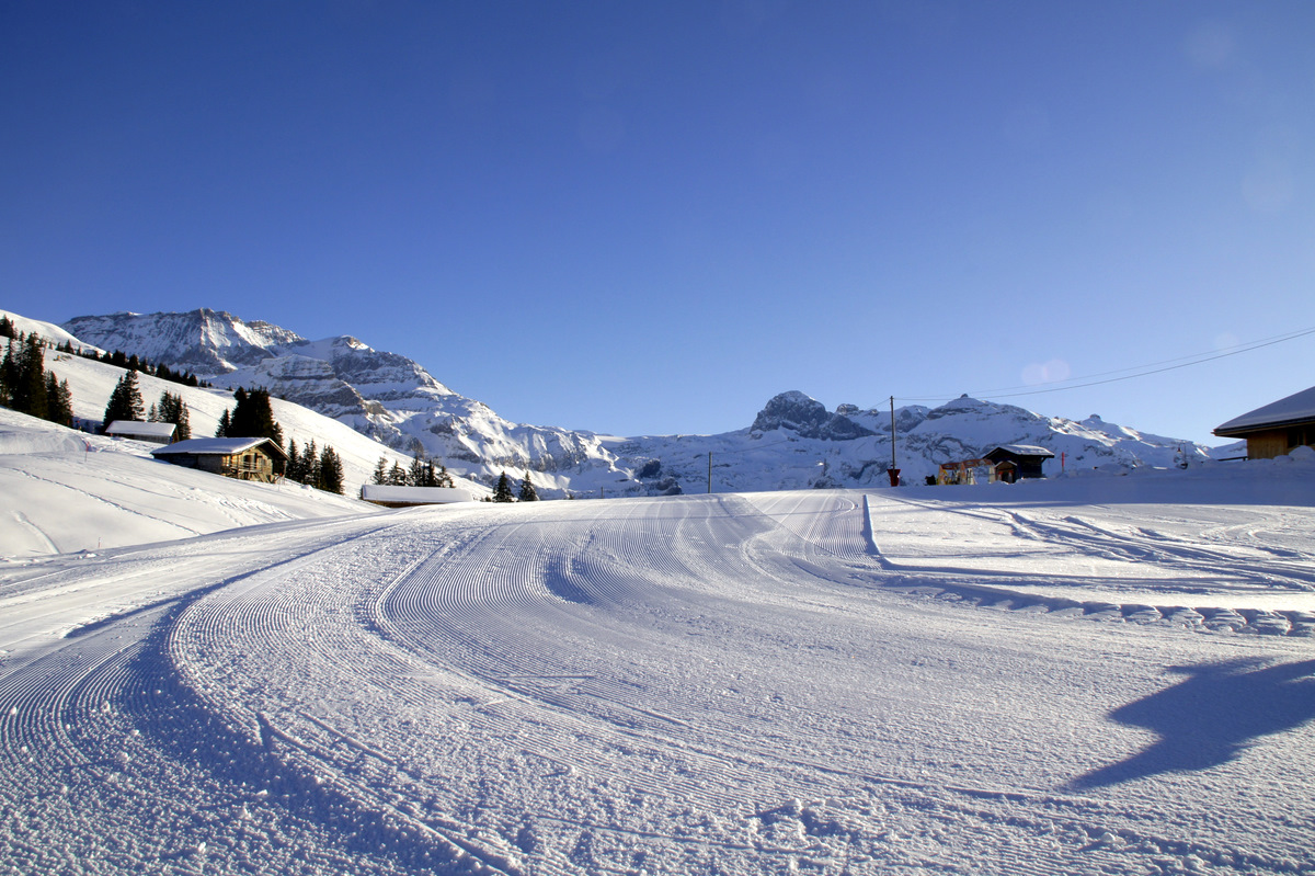 So, das ist jetzt wieder richtig Winter.........................................