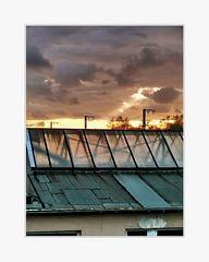 so gesehen beim d. Nachbar, 2. Stock, auf ihrem Nordbalkon, romantischer Sonnenuntergang (oder?)