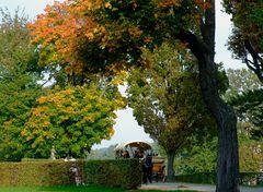 °°° So mag ich den Herbst - und wenn's dann auch noch Moritzburg ist !°°°