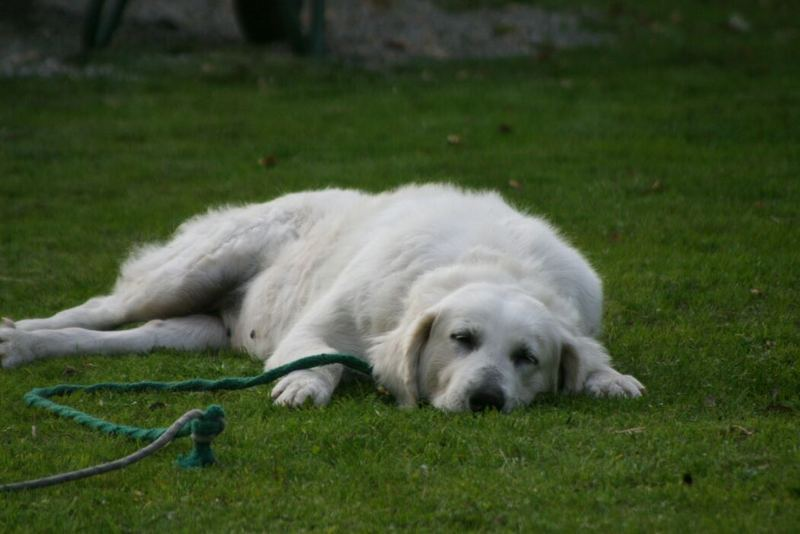 so müde....