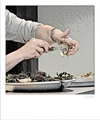 - so öffnet man Austern -