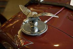 So schnell wie ein Vogel ist das Auto zwar nicht, dafür aber eine Augenweide