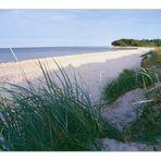 .... so schön ist sie, die Ostsee - Strand bei Maasholm
