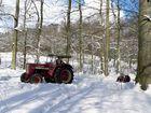 So schön kann ein Winter sein.....