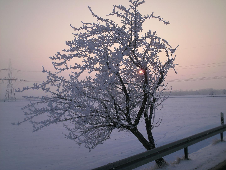 So schön kann Winter sein